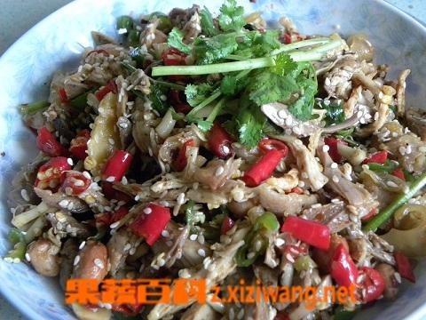 果蔬百科韭菜